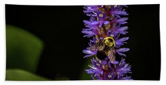 Bath Towel featuring the photograph Pollen Collector 3 by Jay Stockhaus