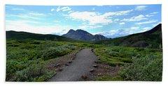 Polychrome Pass Trail, Denali Hand Towel