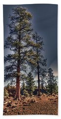 Ponderosa Pines At The Bonito Lava Flow Hand Towel