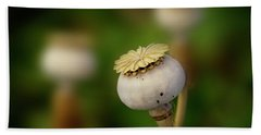 Hand Towel featuring the photograph Poppy Seed Pod - 365-147 by Inge Riis McDonald