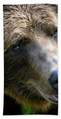 Portrait Of A Grizzly Bath Towel by Lana Trussell