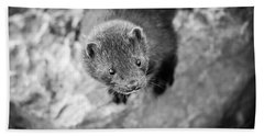 Hand Towel featuring the photograph Portrait Of A Mink by Steven Santamour
