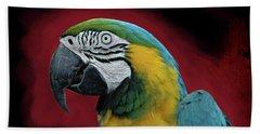 Portrait Of A Parrot Hand Towel by Jeff Burgess