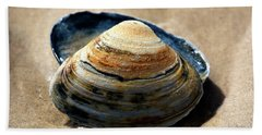 Portrait Of A Seashell At Long Beach Island Hand Towel