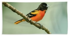 Portrait Of A Singing Baltimore Oriole Bath Towel by Joni Eskridge