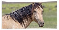 Portrait Of A Wild Horse Bath Towel