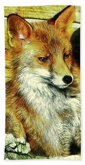 Portrait Of An Urban Fox Hand Towel