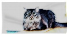 Portrait Of Maine Coon, Mattie Bath Towel by Gina O'Brien