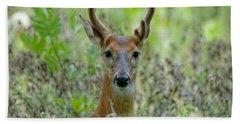 Portriat Of Male Deer Hand Towel