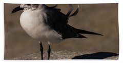 Posing Laughing Gull Bath Towel