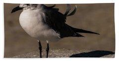 Posing Laughing Gull Hand Towel