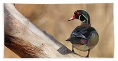 Posing Wood Duck Hand Towel