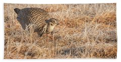 Bath Towel featuring the photograph Prairie Chicken 11-2015 by Thomas Young