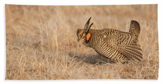 Bath Towel featuring the photograph Prairie Chicken 8-2015 by Thomas Young