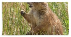 Hand Towel featuring the photograph Prairie Dog by Brenda Jacobs