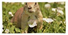 Prairie Dog Hand Towel by Nancy Landry