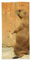 Hand Towel featuring the photograph Prairie Dog Profile by Robin Regan