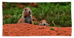 Hand Towel featuring the photograph Prairie Dogs 004 by George Bostian