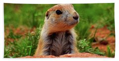 Hand Towel featuring the photograph Prairie Dogs 007 by George Bostian