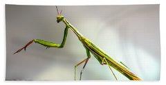 Praying Mantis  Hand Towel
