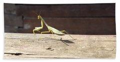 Praying Mantis  Bath Towel by Don Koester