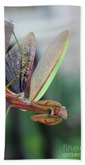 Praying Mantis Bath Towel by Stacey Zimmerman