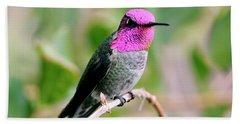 Pretty In Pink Anna's Hummingbird Hand Towel