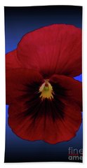 Hand Towel featuring the photograph Pretty Pansy by Donna Brown