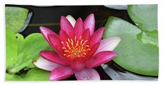 Pretty Red Water Lily Flowering In A Water Garden Bath Towel