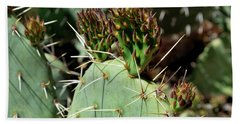 Prickly Pear Buds Hand Towel