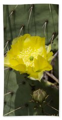 Prickly Pear Cactus Blossom - Opuntia Littoralis Bath Towel