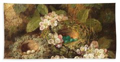 Primroses And Bird's Nests On A Mossy Bank Bath Towel