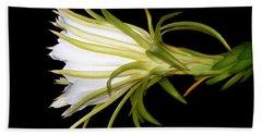 Profile Night Blooming Cereus Hand Towel