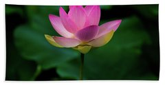 Profile Of A Lotus Lily Hand Towel