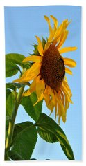 Profile Of A Sunflower Bath Towel by Kathleen Sartoris
