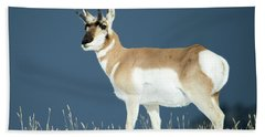 Pronghorn Hand Towel