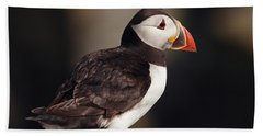 Puffin On Rock Hand Towel