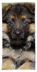 Bath Towel featuring the photograph Puppy In Heart by Sandy Keeton