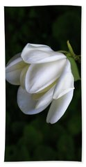 Purity In White Hand Towel