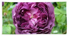 Purple English Rose Bath Towel