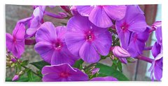 Purple Flame Phlox Bath Towel
