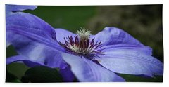 Purple Flower Hand Towel by Henri Irizarri