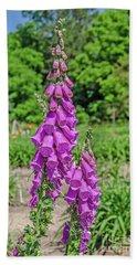 Purple Foxglove Digitalis Purpurea L Hand Towel