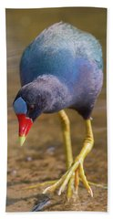 Purple Gallinule Bigfoot Bath Towel