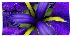 Purple Iris Centre Hand Towel