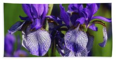 Hand Towel featuring the photograph Purple Iris Doubled by Rachel Cohen