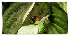 Purple-rumped Sunbird Bath Towel