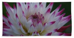 Purple Tipped Starburst Dahlia Bath Towel by Patricia Strand