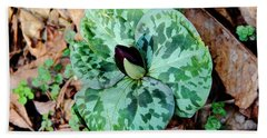 Purple Toadshade Trillium Bath Towel
