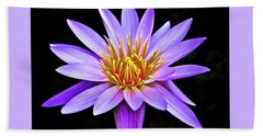 Purple Waterlily With Golden Heart Bath Towel